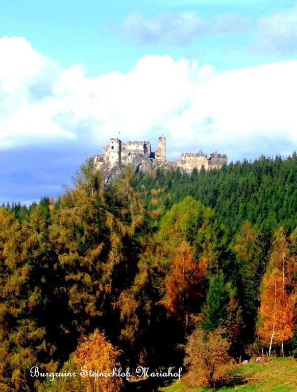 Artikel_2014_Burg
